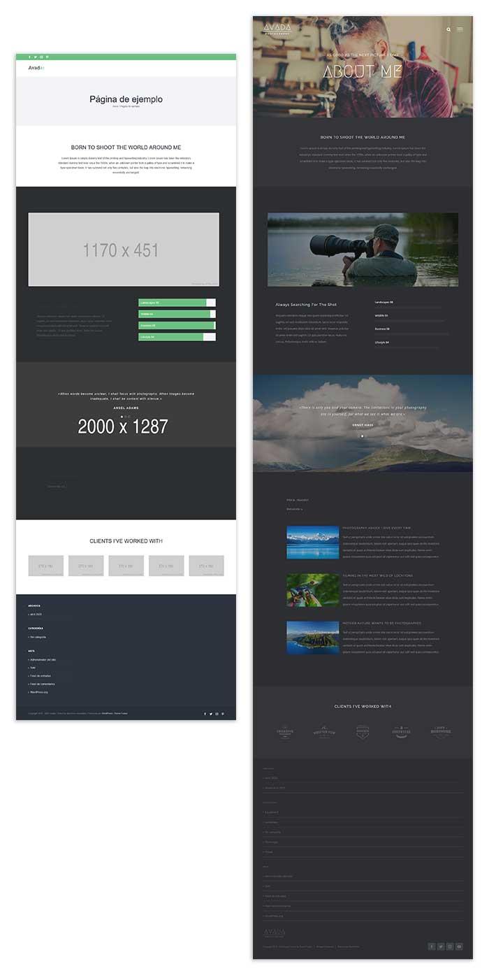 Importar demo de página con Avada Builder