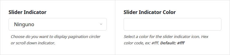 Elegir indicador del slider